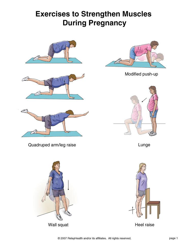 xexerpr1 تقویت عضلات بدن در خانم های باردار