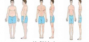 تیپ بدنی