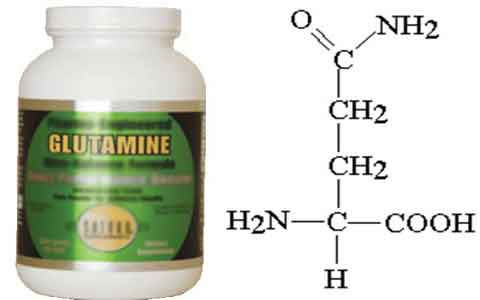 گلوتامین چیست و شیوه مصرف آن چگونه است؟