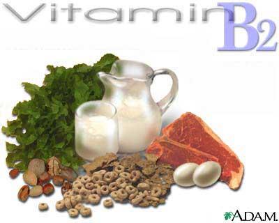 vitamin b2 elmevarzesh انواع ویتامین و همچنین فواید آن هم