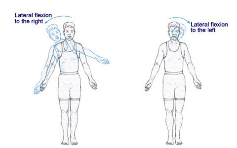 Lateral-flexion-elmevarzesh