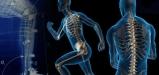 sports-biomechanics-
