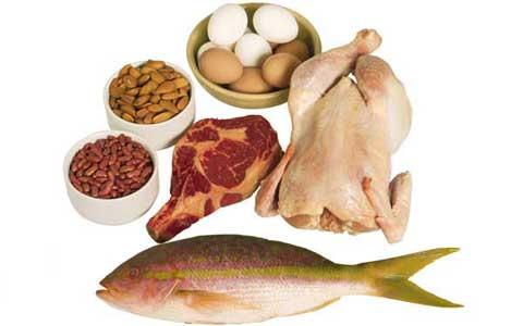 protein 1 elmevarzesh چرا بدن ما به پروتئین مستلزم و نیاز دارد؟