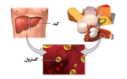 کلسترول و تری گلیسیرید