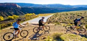 فواید شگفت انگیز دوچرخه سواری بر مغز و بدن