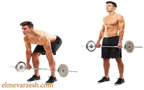 13 تمرین برای تقویت عضلات همسترینگ