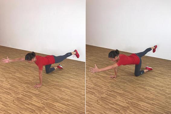 Bird Dog ۲۰ دقیقه تمرین بدون وزنه در منزل جهت عضلات ران، باسن، بازو و همچنین شکم