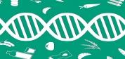 آیا تغییر رژیم غذایی میتواند ژنها را تغییر دهد؟