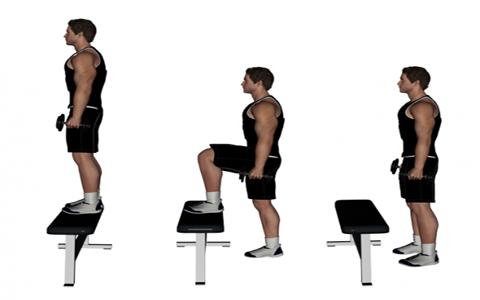 Dumbbell Standing Step Up برنامه جذاب و جالب و خوب اسپورت و ورزشی مؤثر و همچنین با نتایج سریع که تنها و فقط به پله مستلزم و نیاز دارد