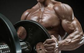 چه فاکتورهای ژنتیکی تعیین کنندهی فرم و قدرت عضلاتتان هستند؟