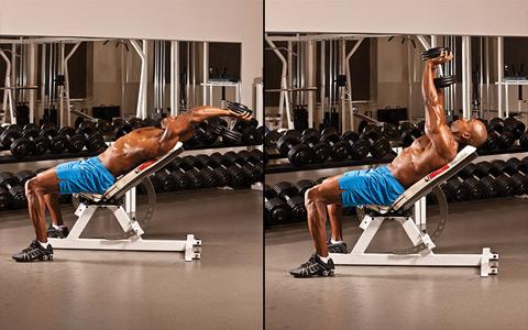 10 حرکت از بهترین تمرینات برای پرورش عضلات سینه