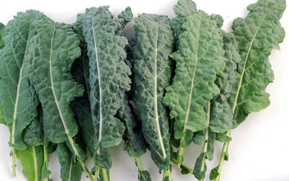 Kale معرفی بهترین مواد غذایی عضله ساز و همچنین چربی سوز