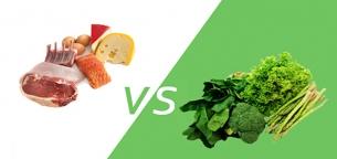 پروتئین حیوانی چه تفاوتی با پروتئین گیاهی دارد؟ کدام بهتر است؟