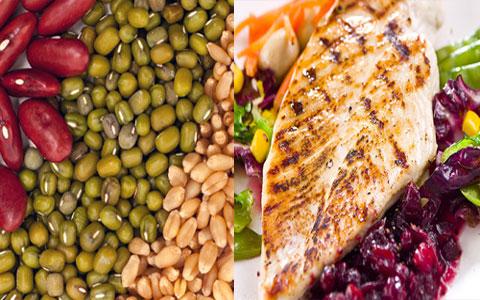 Plant and animal protein  چگونه نگهداری و همچنین طبخ پروتئین بر جذب پروتئین در بدن تأثیر دارد؟