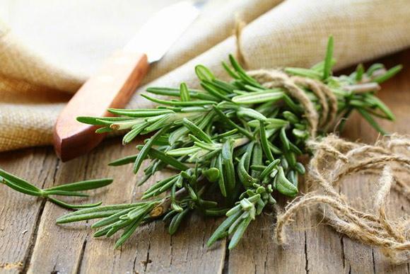 12 ماده غذایی برای درمان سرماخوردگی و آنفولانزا