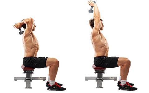 آموزش حرکات بدنسازی پشت بازو با تصویر متحرک