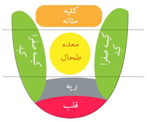 انواع رنگ زبان و ارتباط آن با بیماری چیست؟