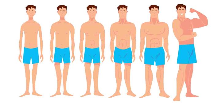 روشهایی برای چاق شدن سالم و سریع