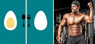 برای عضله سازی تخم مرغ کامل بهتر است یا سفیده تخم مرغ؟