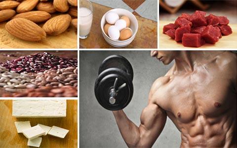 best protein foods for building muscle بهترین منابع غذایی پروتئین جهت رشد عضلات