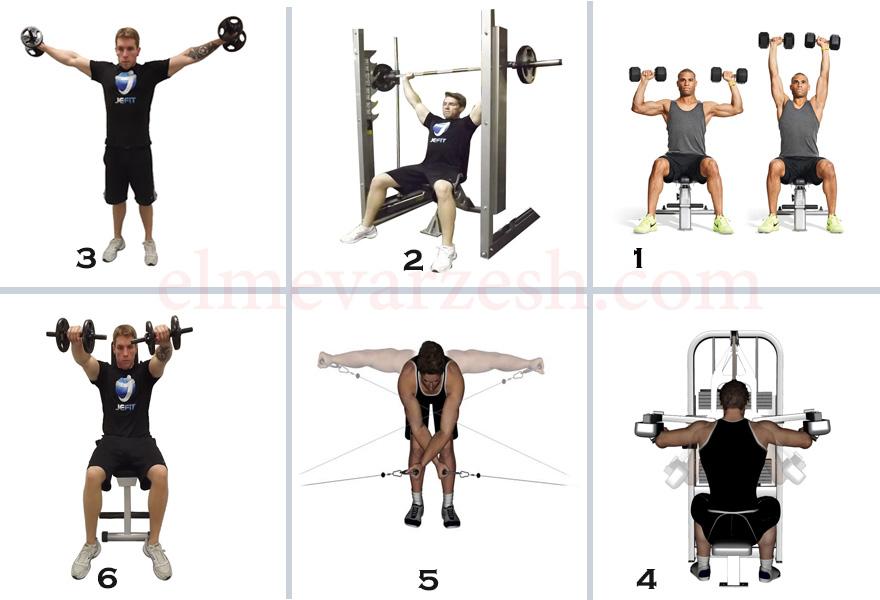 برنامه تمرینی بدنسازی عضلات شانه - تصویری