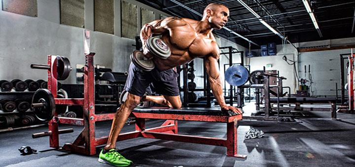 اساس ساخت عضلات در تناسب اندام حرفهای چیست؟