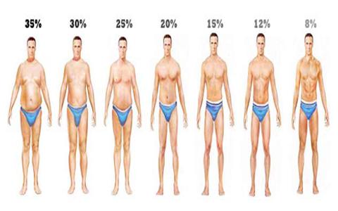 سطوح مختلف درصد چربی بدن در زنان و مردان