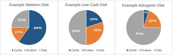 رژیم غذایی کتوژنیک چیست و چه تأثیری بر عملکرد ورزشی دارد؟