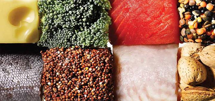مهمترین نقش پروتئین در بدن چیست؟