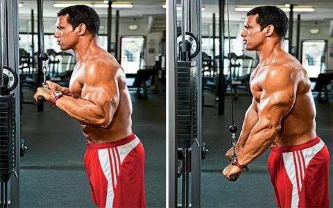حرکات ورزشی برای رفع افتادگی بازو